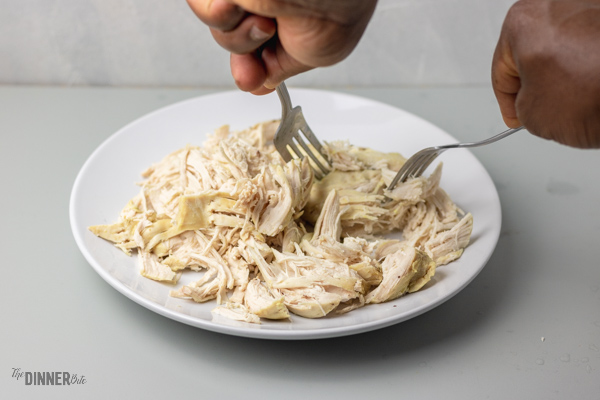 hand shredding cooked chicken with two forks.