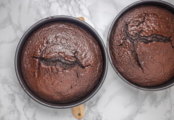 two chocolate cake in cake pans.