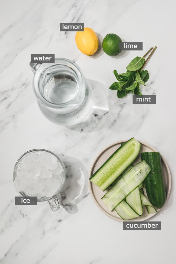 ingredients needed for the infused water.